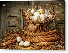 Basket Of Eggs On Straw Acrylic Print by Sandra Cunningham