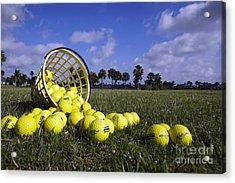 Basket Of Golf Balls Acrylic Print by Skip Nall
