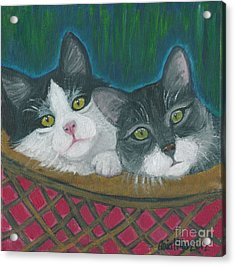 Basket Of Kitties Acrylic Print