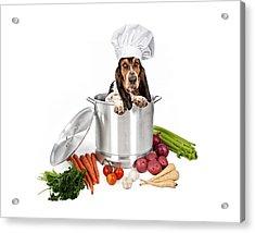 Basset Hound Dog In Big Cooking Pot Acrylic Print by Susan Schmitz