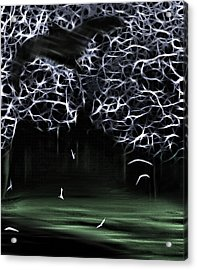 Bat Cave 2 Acrylic Print by Steve Ohlsen