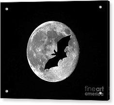 Bat Moon Acrylic Print by Al Powell Photography USA