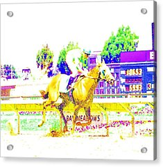 Bay Meadows Acrylic Print