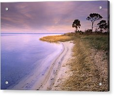 Beach Along Saint Josephs Bay Florida Acrylic Print by Tim Fitzharris