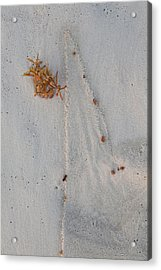Acrylic Print featuring the photograph Beach Art I by Charles Warren