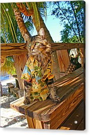 Acrylic Print featuring the photograph Beach Bum Chic by Joann Biondi
