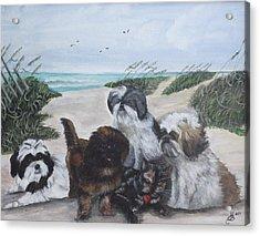 Beach Pals Acrylic Print by Kim Selig