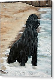 Acrylic Print featuring the painting Beach Patrol by Sharon Nummer