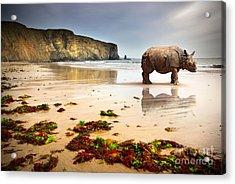 Beach Rhino Acrylic Print by Carlos Caetano