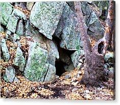 Bear Cave Acrylic Print