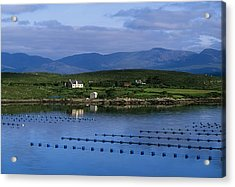 Beara, Co Cork, Ireland Mussel Farm Acrylic Print by The Irish Image Collection