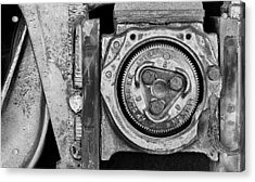 Bearing The Weight Acrylic Print by Donald Schwartz