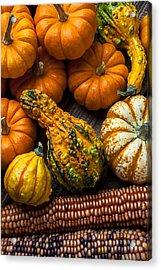 Beautiful Autumn Acrylic Print by Garry Gay