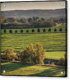 Beautiful Landscape With Trees And Field Acrylic Print by Fsn