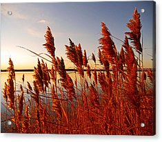 Beautiful Morning ... Acrylic Print by Juergen Weiss