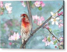 Beautiful Spring Acrylic Print by Betty LaRue
