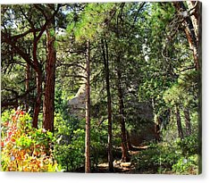 Beautiful Trail North Canyon Acrylic Print
