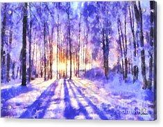 Beautiful Winter Morning Acrylic Print by Elizabeth Coats