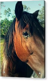 Beauty Acrylic Print by Chasity Johnson