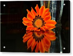 Acrylic Print featuring the photograph Beauty In Reflection by Rima Biswas