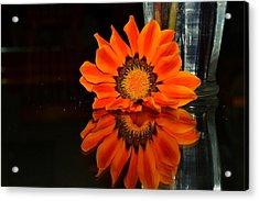 Beauty In Reflection Acrylic Print