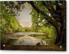 Beauty Of Ireland Acrylic Print by Cheryl Davis