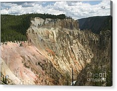 Acrylic Print featuring the photograph Beauty Of The Grand Canyon In Yellowstone by Living Color Photography Lorraine Lynch