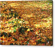 Bed Of Colors Acrylic Print by Lee Yang