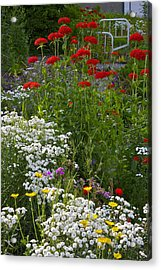 Bed Of Flowers Acrylic Print by Johanna Bruwer