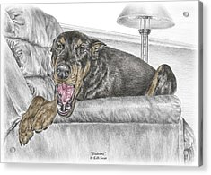 Acrylic Print featuring the drawing Bedtime - Doberman Pinscher Dog Print Color Tinted by Kelli Swan