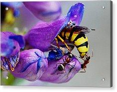 Bee Parking Lot Acrylic Print
