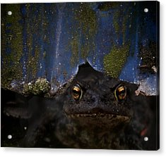 Behind The Curtain Acrylic Print by Odd Jeppesen