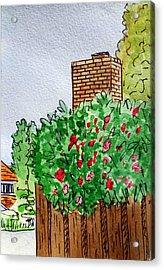 Behind The Fence Sketchbook Project Down My Street Acrylic Print by Irina Sztukowski