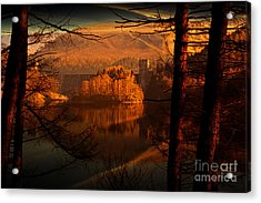Behind The Trees Acrylic Print by Nigel Hatton
