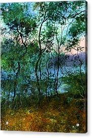 Behind The Trees Acrylic Print by Sergey Zhiboedov