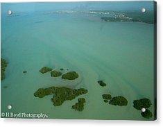 Belizean Streaks Acrylic Print by Heather  Boyd