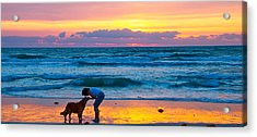 Acrylic Print featuring the photograph Bella At Sunrise by Alice Gipson