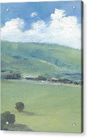 Bembridge Down In Early Summer Acrylic Print by Alan Daysh