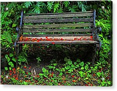 Acrylic Print featuring the photograph Bench And Flowers- St Lucia. by Chester Williams