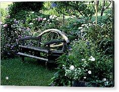 Bench In Garden Acrylic Print by David Chapman