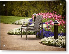 Bench In The Park Acrylic Print by Cheryl Davis
