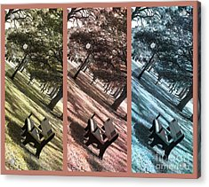 Bench In The Park Triptych  Acrylic Print by Susanne Van Hulst