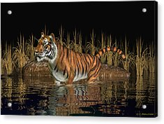 Acrylic Print featuring the digital art Bengal Tiger by Walter Colvin
