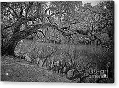 Acrylic Print featuring the photograph Bent Oak River Reflection by Larry Nieland