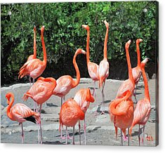 Acrylic Print featuring the digital art Bermuda Flamingos by Richard Stevens