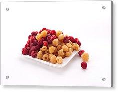Berries Acrylic Print by Catherine Lau