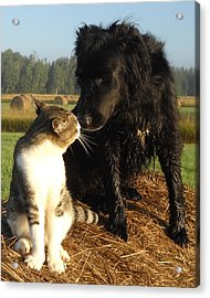 Best Buddies Portrait Acrylic Print