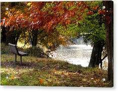 Best Seat On The Bank Acrylic Print by Darlene Bell