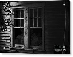 Better Days Acrylic Print by Cris Hayes