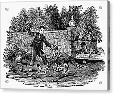 Bewick: Boy With Dogs Acrylic Print by Granger